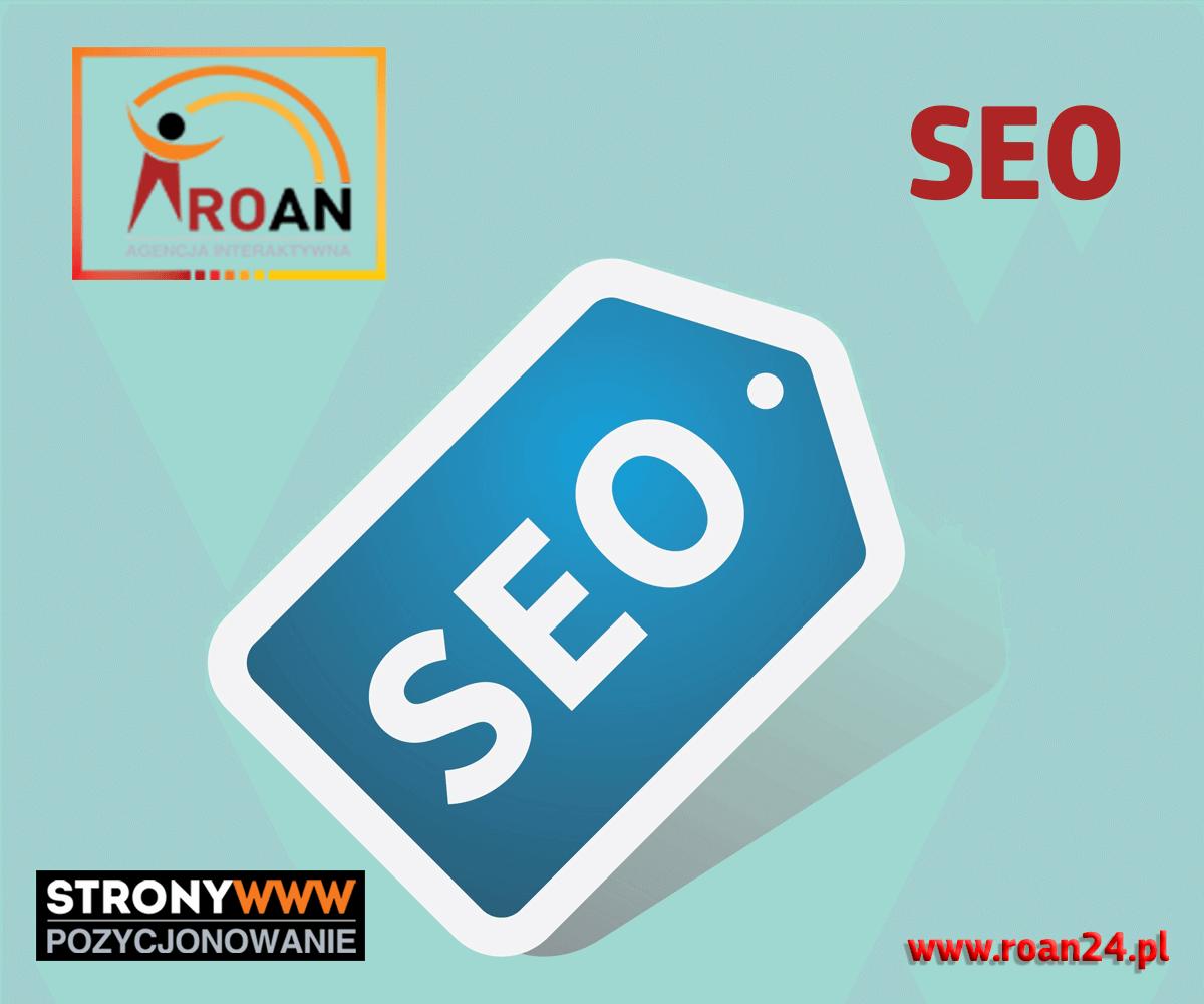 Leitfaden zur Positionierung von Websites Roan Interactive Agency Gorzow