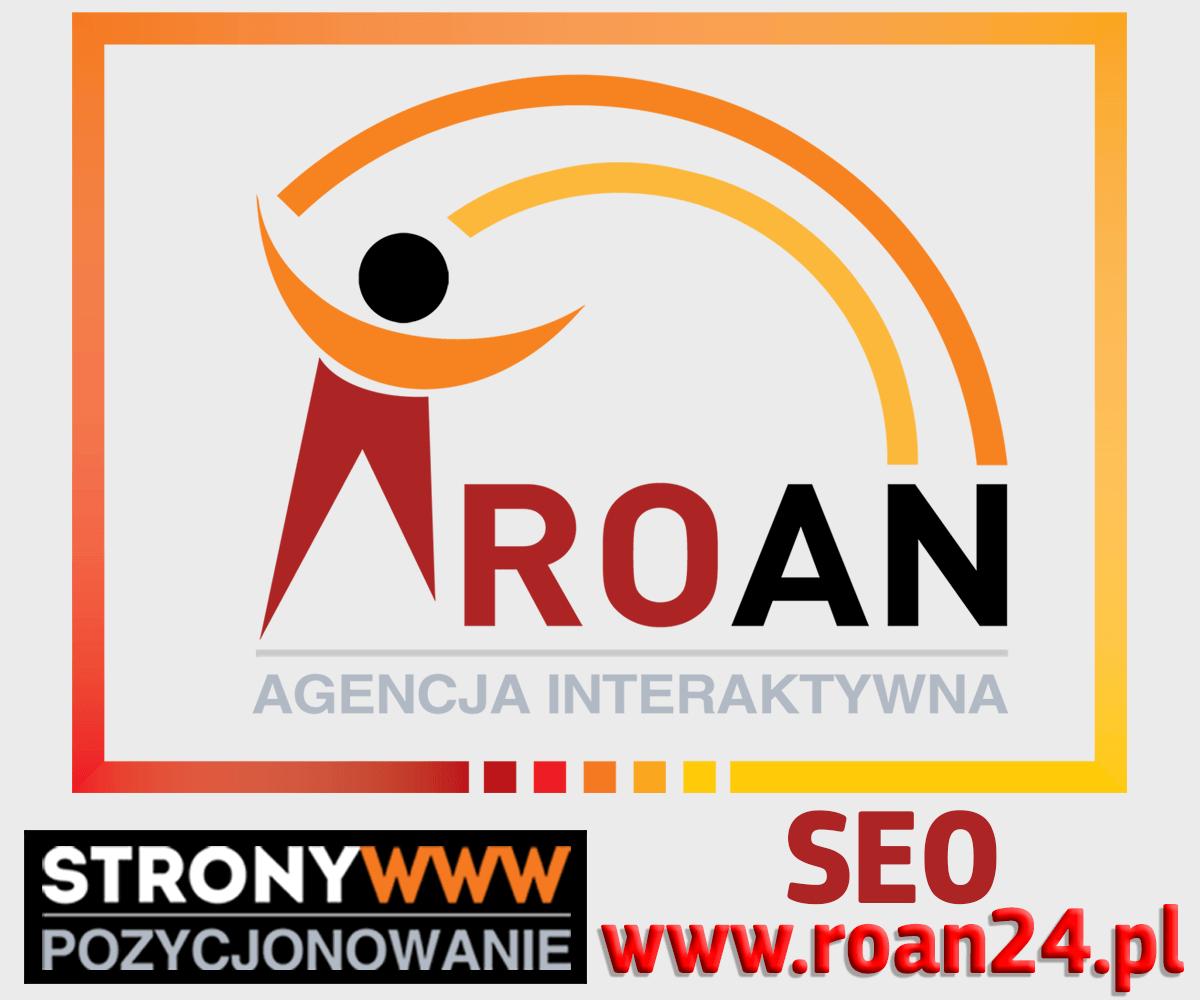 Positionierung von Websites Seo Sem Roan Interaktive Agentur Gorzow