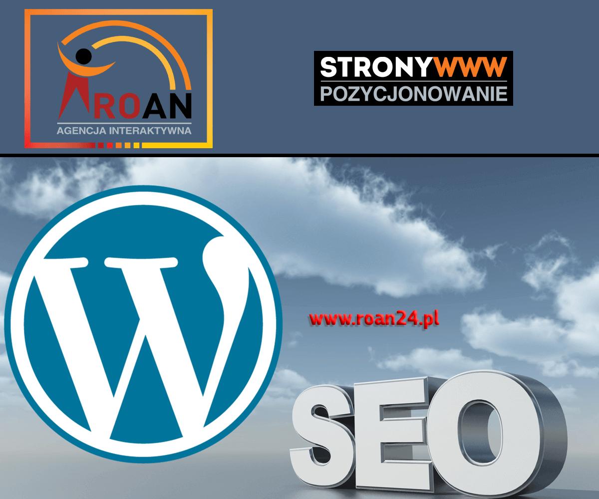 Erstellung und Positionierung von Websites Breslau Roan Interactive Agency Gorzow